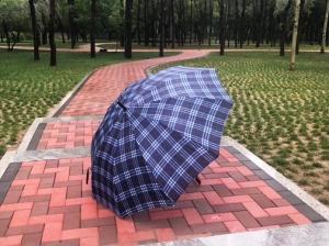 透水砖-森林公园