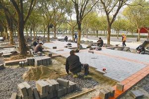 河南郑州|PC砖|哪儿家卖!